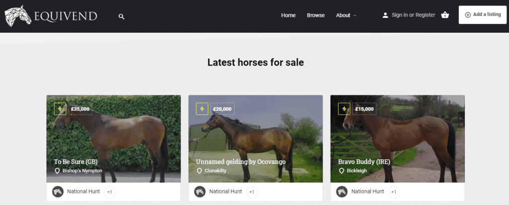 Screenshot of latest racehorses for sale on site