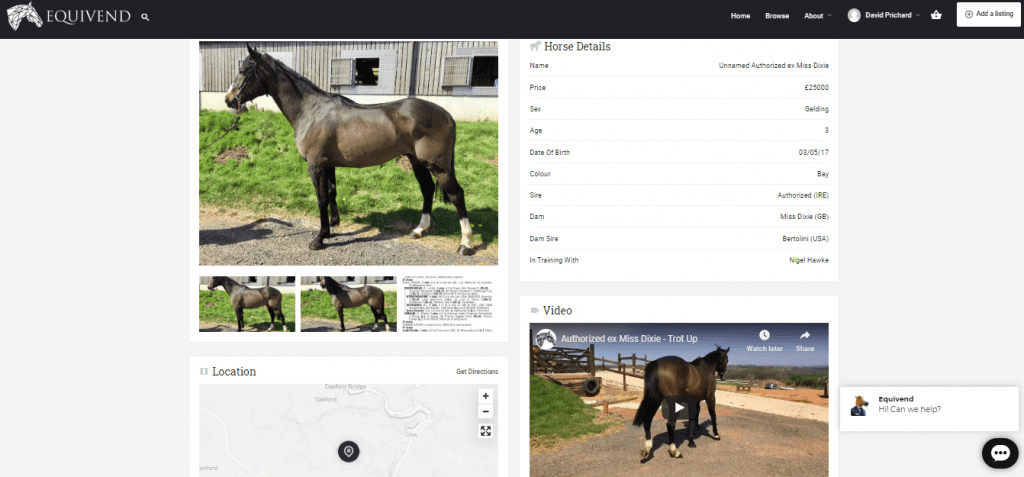 Advertise your horse on Equivend as an alternative to horses in training sales and breeze up sales